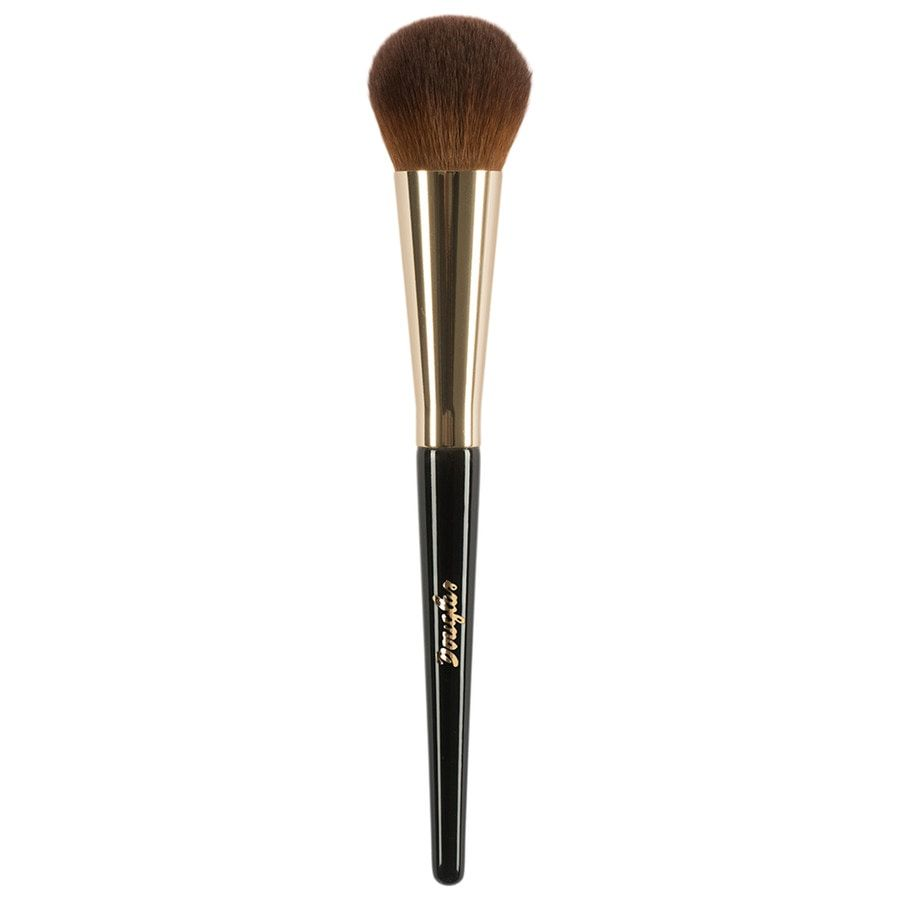 Douglas Collection Silk Finish Brush 11