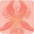 L'Orchidée Corail