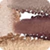 č. 03 - Vibrant Brown